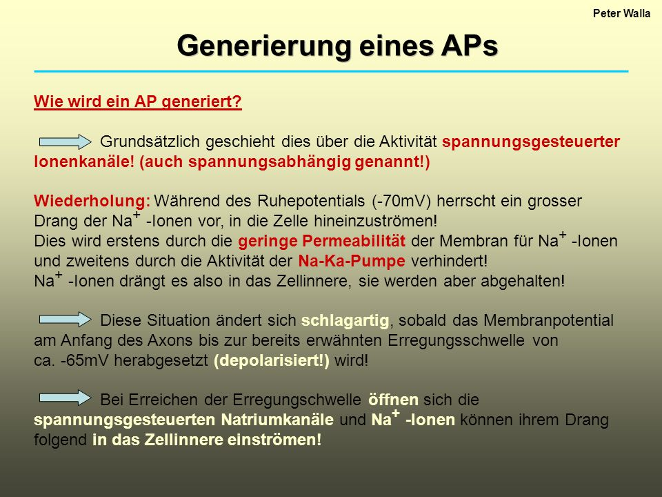 Generierung eines APs Wie wird ein AP generiert