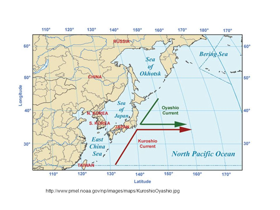 http://www.pmel.noaa.gov/np/images/maps/KuroshioOyashio.jpg