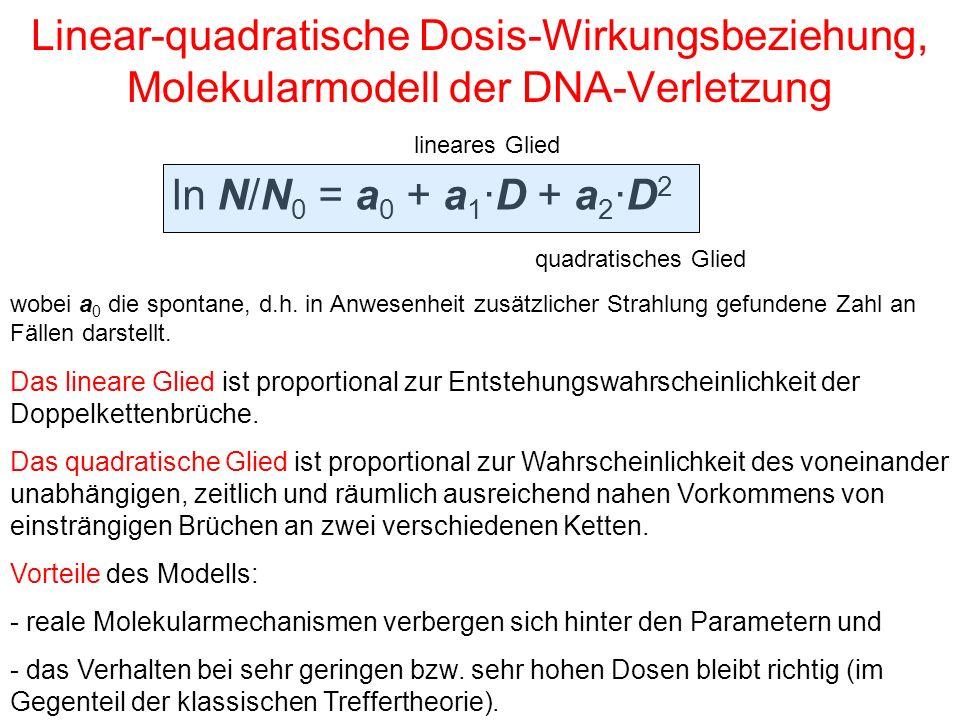 Linear-quadratische Dosis-Wirkungsbeziehung, Molekularmodell der DNA-Verletzung