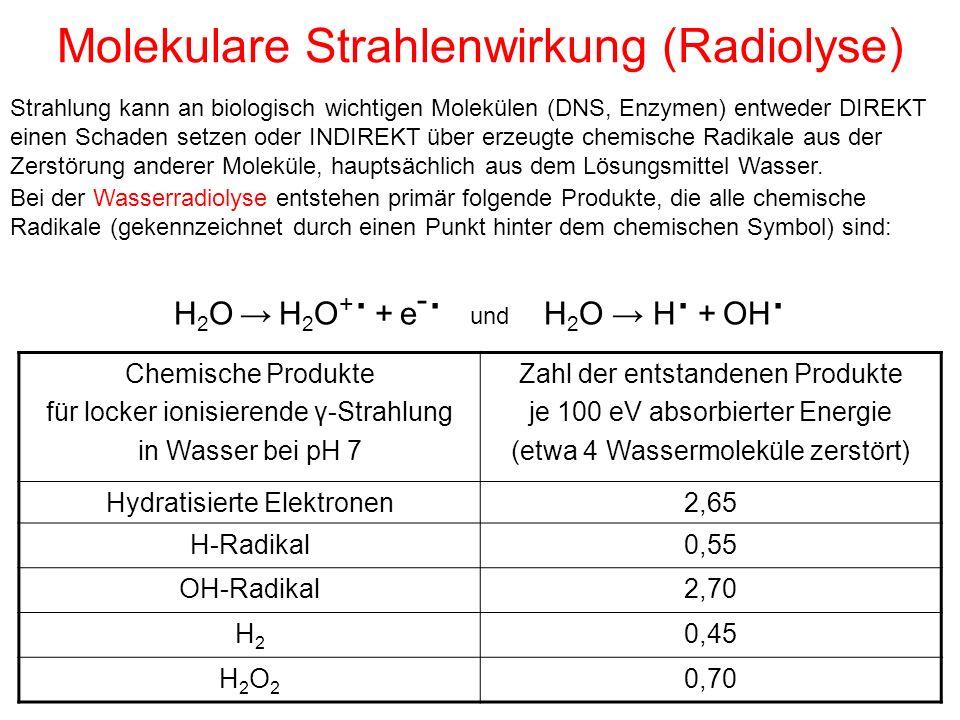 Molekulare Strahlenwirkung (Radiolyse)