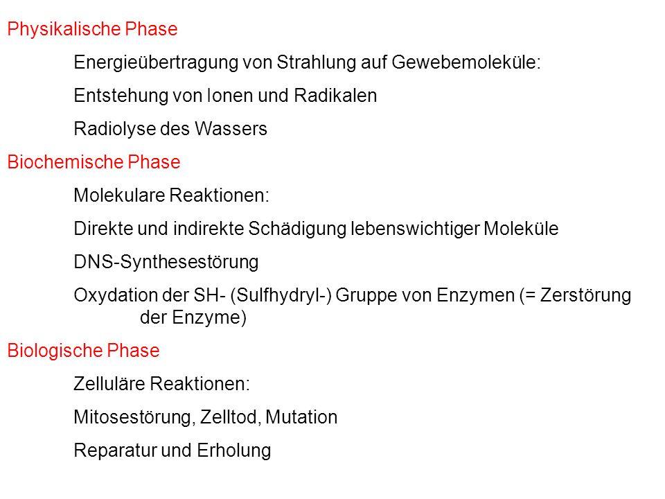 Physikalische Phase Energieübertragung von Strahlung auf Gewebemoleküle: Entstehung von Ionen und Radikalen.