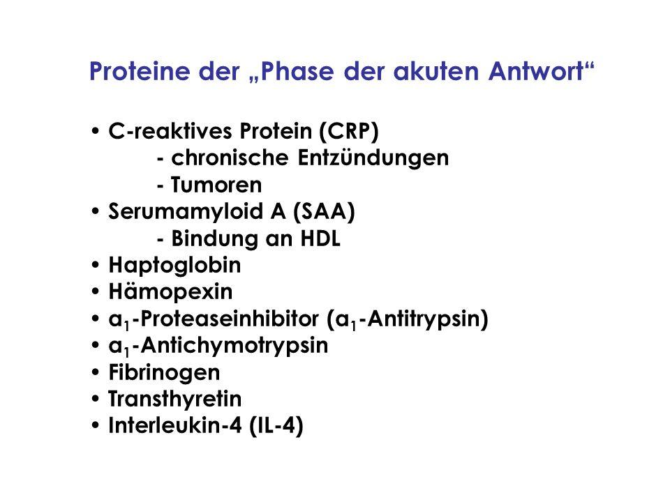 """Proteine der """"Phase der akuten Antwort"""
