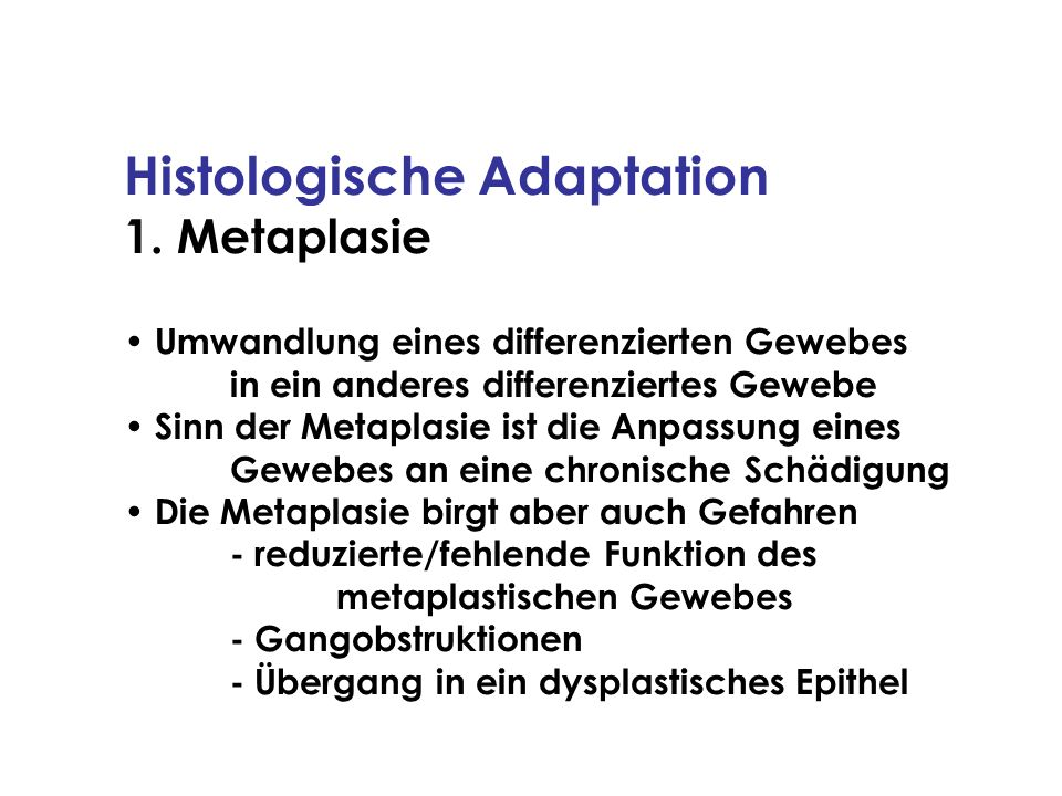 Histologische Adaptation