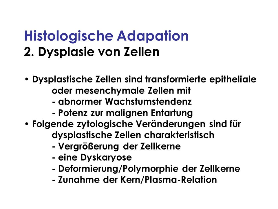 Histologische Adapation