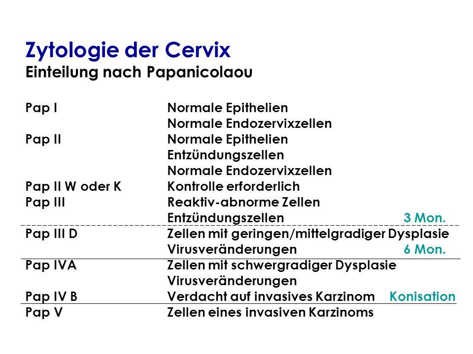 Zytologie der Cervix Einteilung nach Papanicolaou