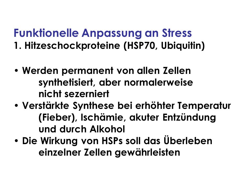 Funktionelle Anpassung an Stress