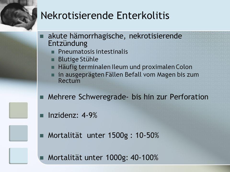 Nekrotisierende Enterkolitis