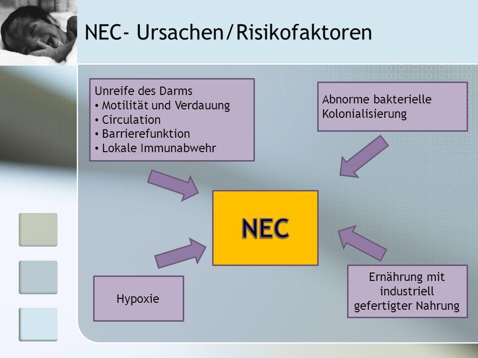 NEC- Ursachen/Risikofaktoren