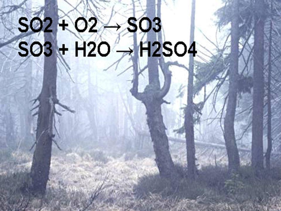 SO2 Eigenschaften: farbloses, stechend riechendes und sauer schmeckendes, giftiges Gas. Verursacht Husten, Atemnot oder Entzündung der Atemwege.