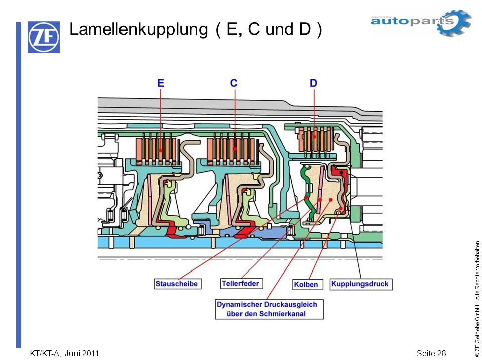 Lamellenkupplung ( E, C und D )