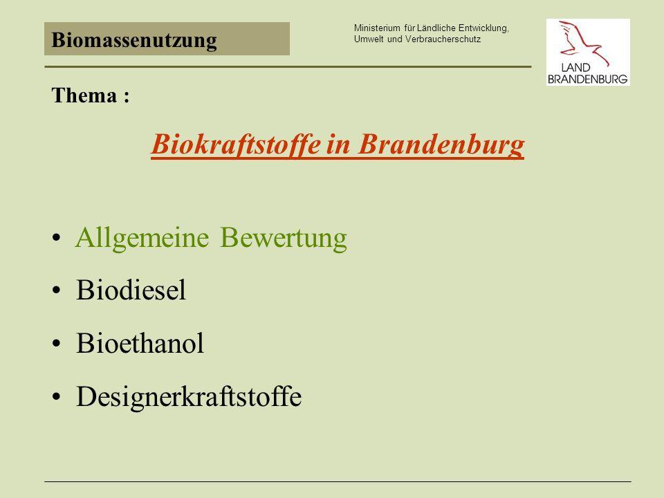 Biokraftstoffe in Brandenburg