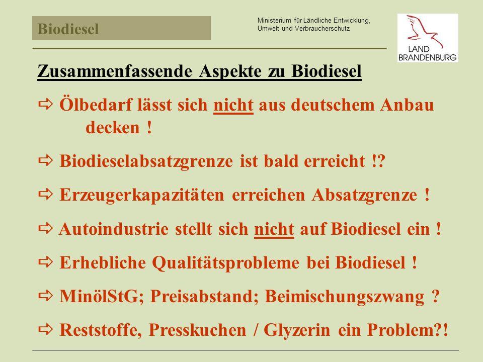 Zusammenfassende Aspekte zu Biodiesel