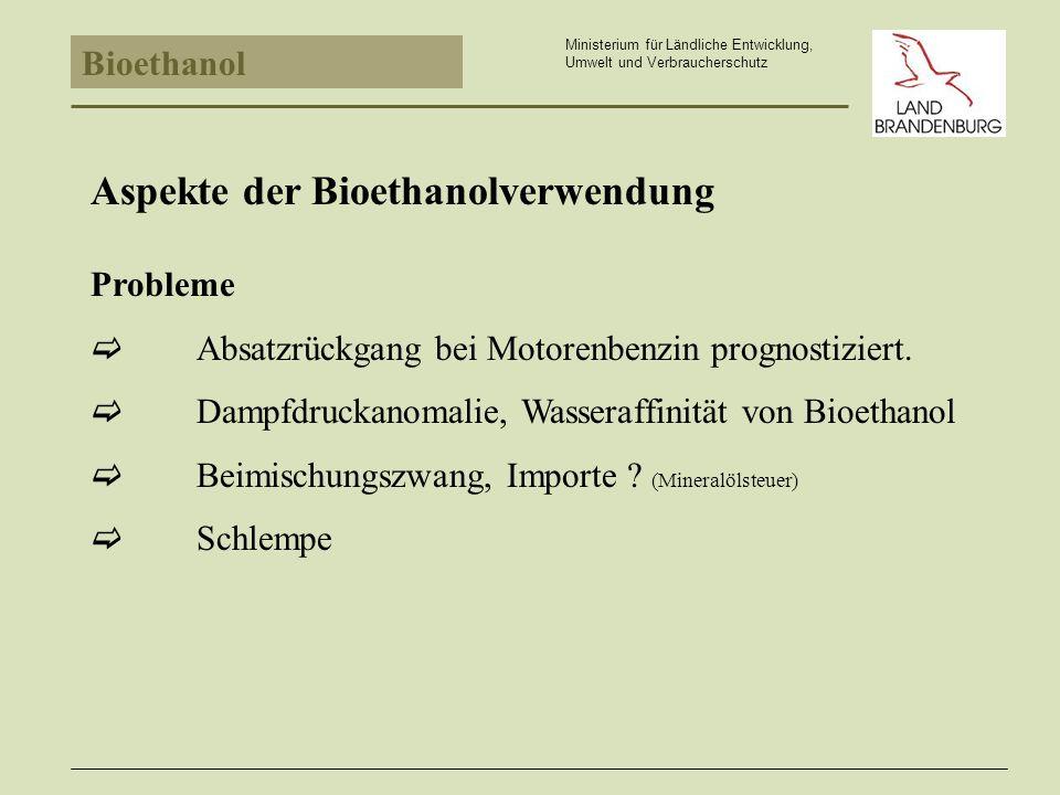 Aspekte der Bioethanolverwendung