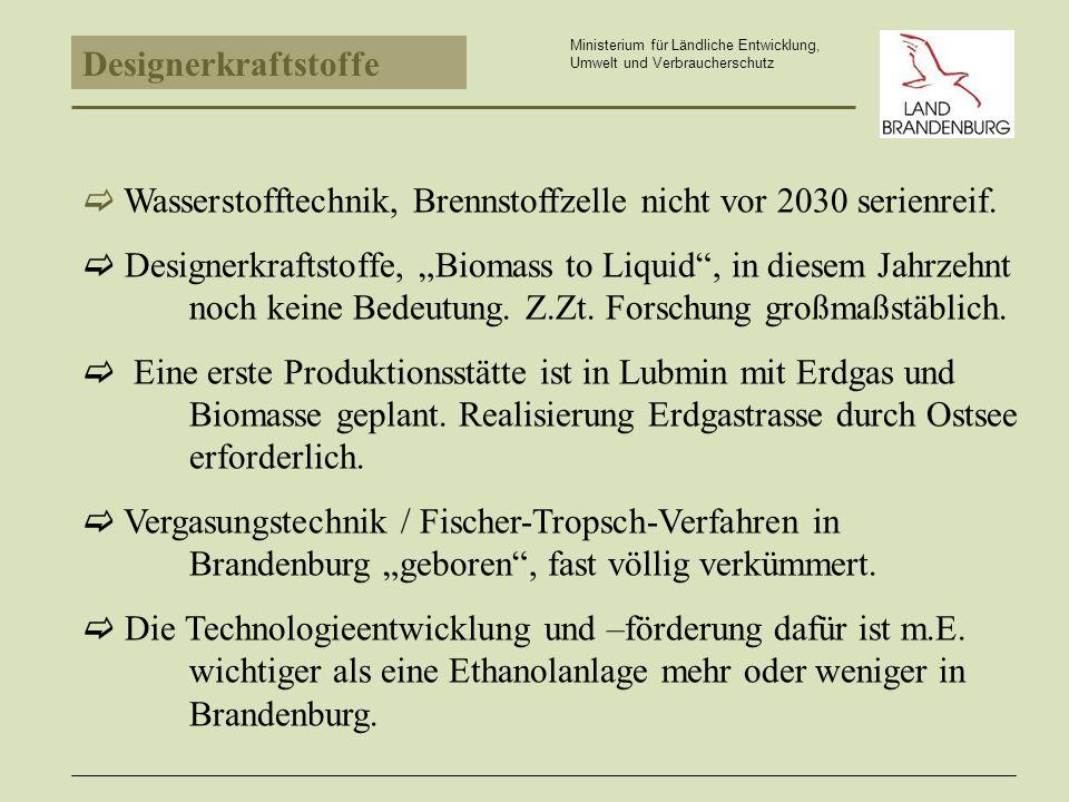 Wasserstofftechnik, Brennstoffzelle nicht vor 2030 serienreif.