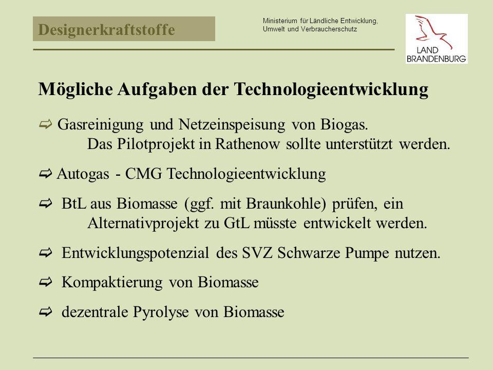 Mögliche Aufgaben der Technologieentwicklung