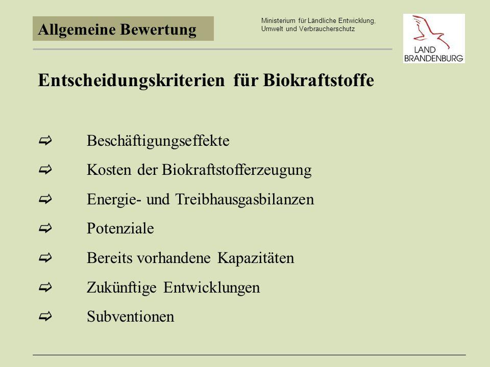 Entscheidungskriterien für Biokraftstoffe