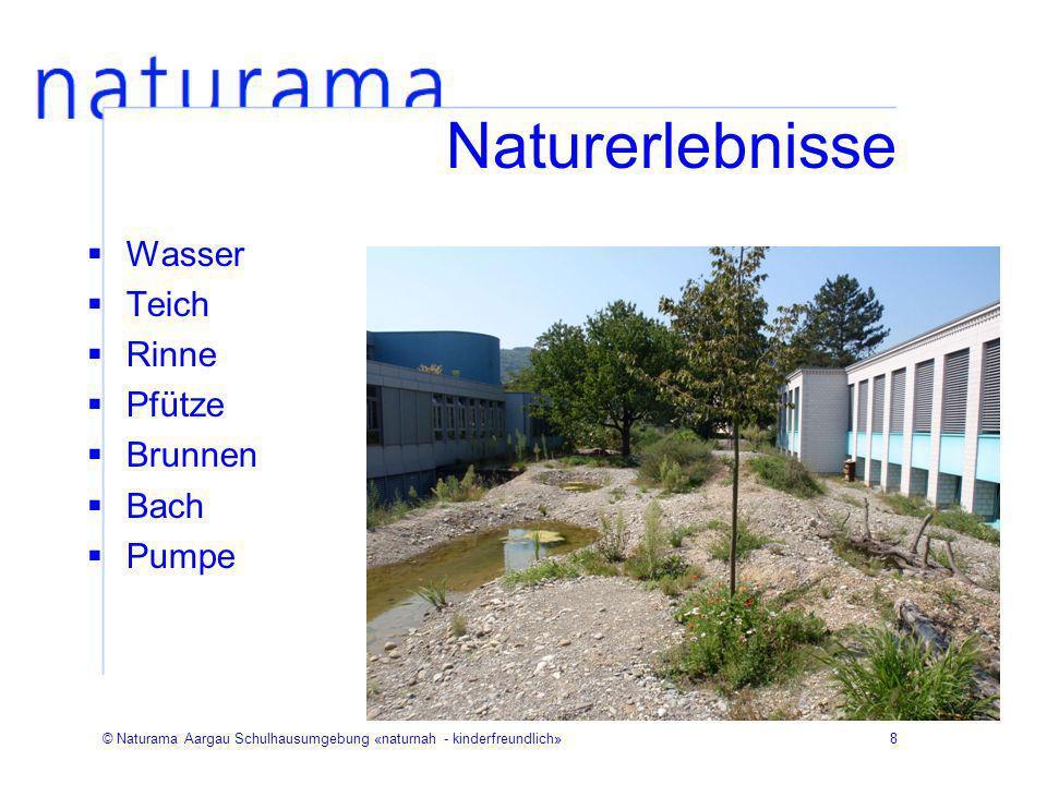 Naturerlebnisse Wasser Teich Rinne Pfütze Brunnen Bach Pumpe