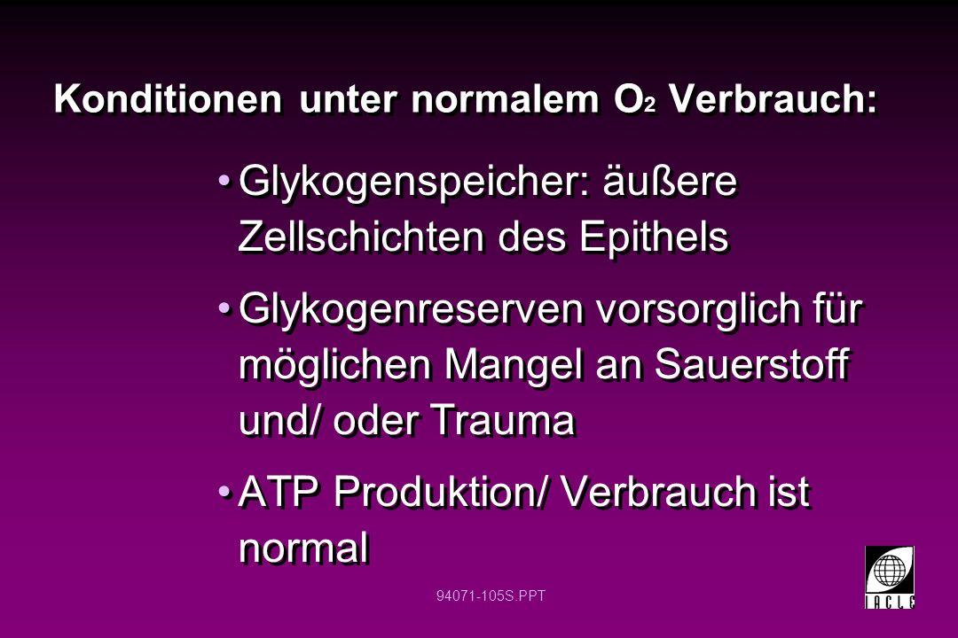 Konditionen unter normalem O2 Verbrauch: