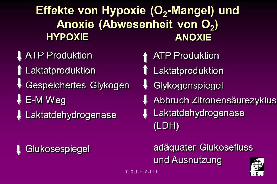 Effekte von Hypoxie (O2-Mangel) und Anoxie (Abwesenheit von O2)