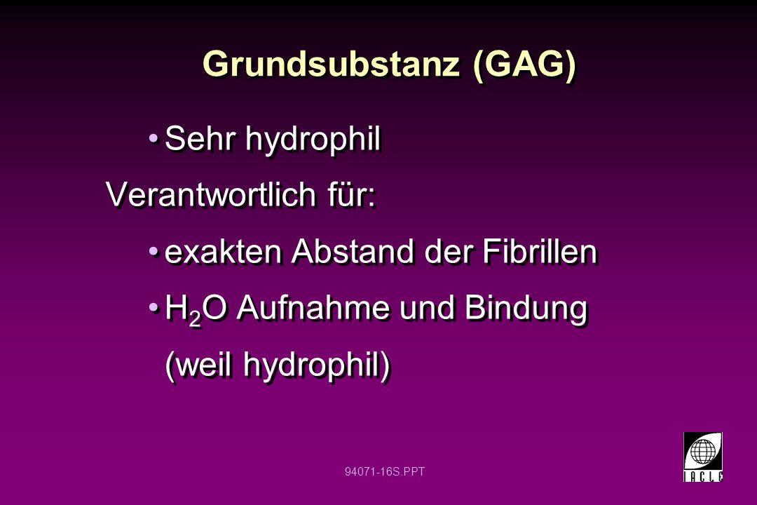 Grundsubstanz (GAG) Sehr hydrophil Verantwortlich für: