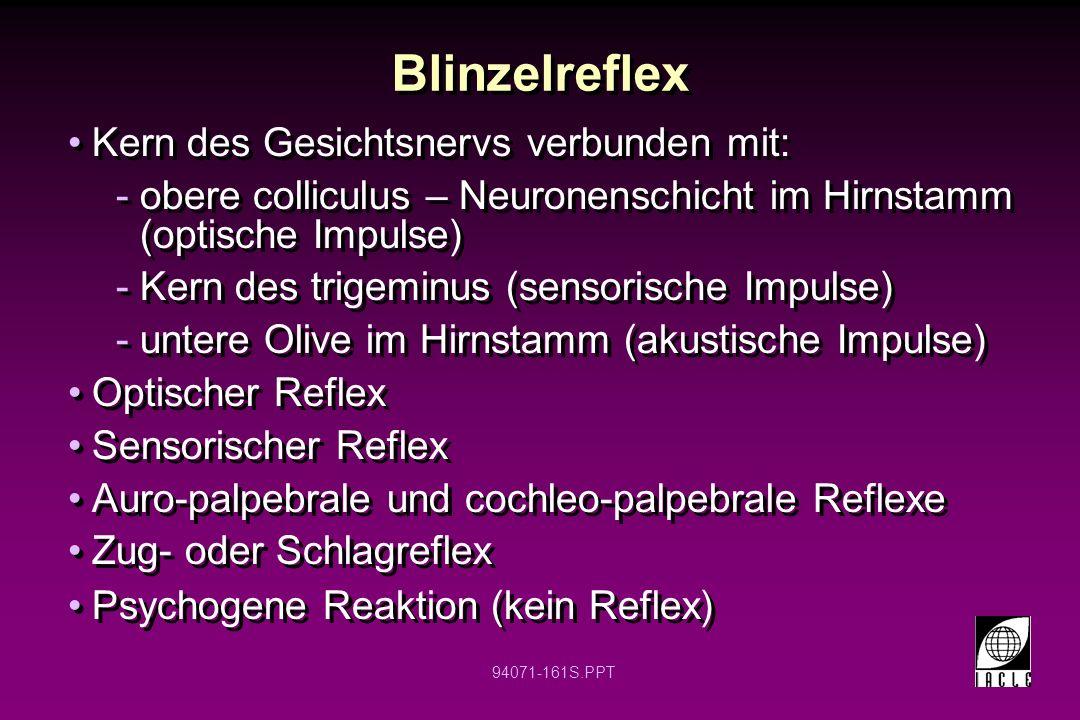 Blinzelreflex Kern des Gesichtsnervs verbunden mit: