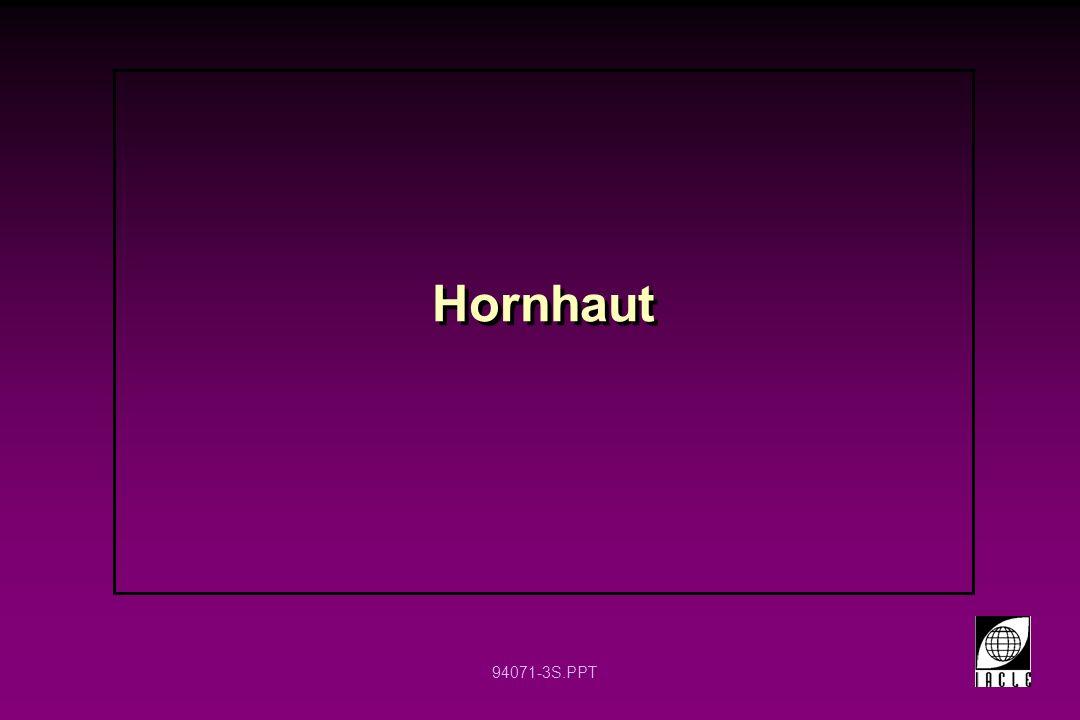 Hornhaut 12 12