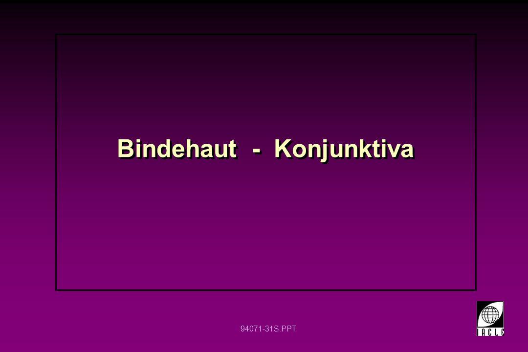 Bindehaut - Konjunktiva