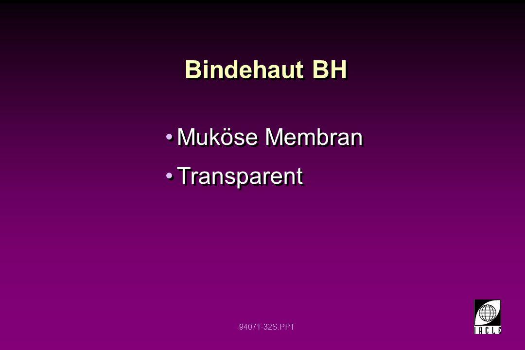 Bindehaut BH Muköse Membran Transparent 12 12