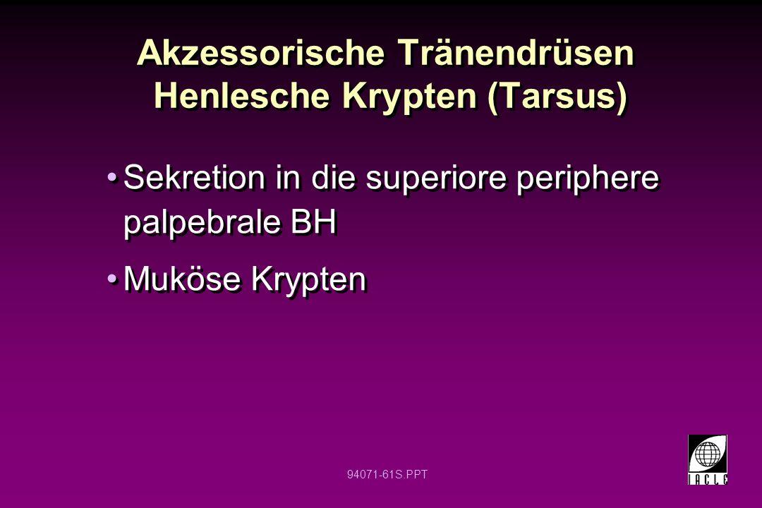 Akzessorische Tränendrüsen Henlesche Krypten (Tarsus)