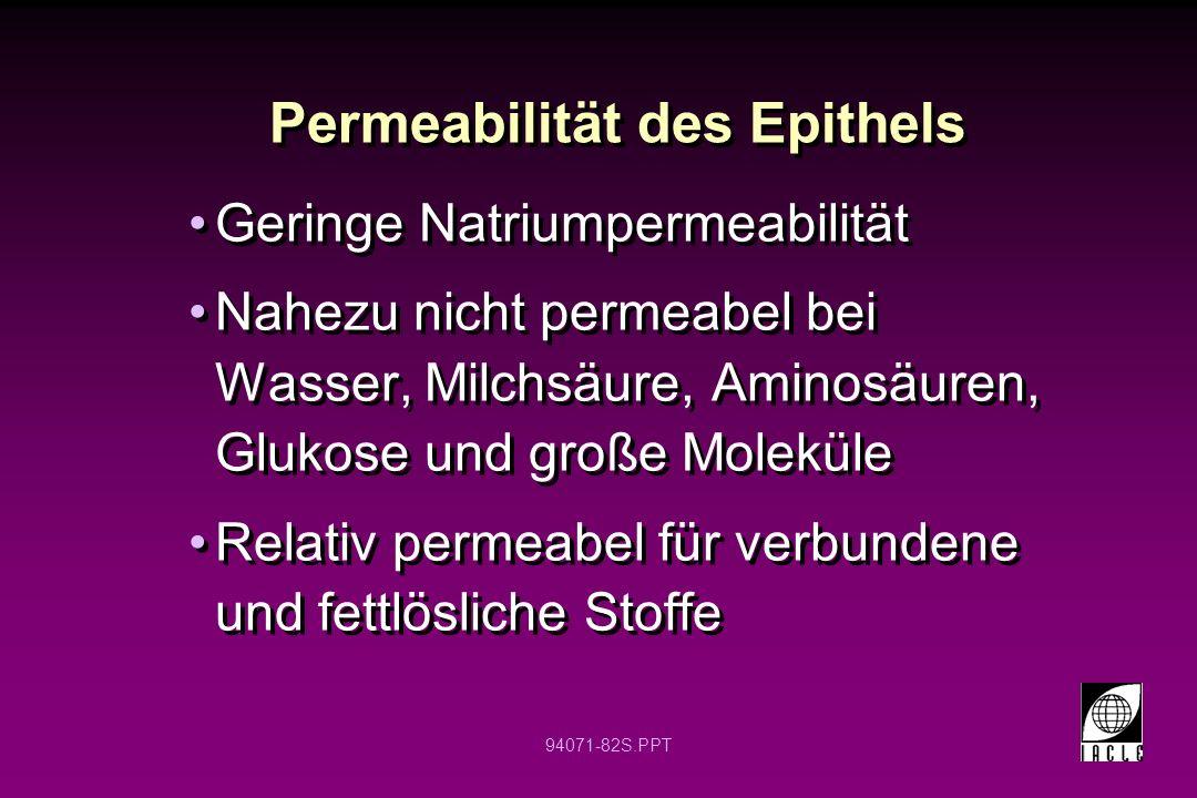 Permeabilität des Epithels