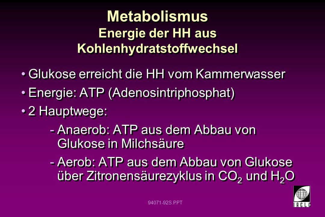 Metabolismus Energie der HH aus Kohlenhydratstoffwechsel