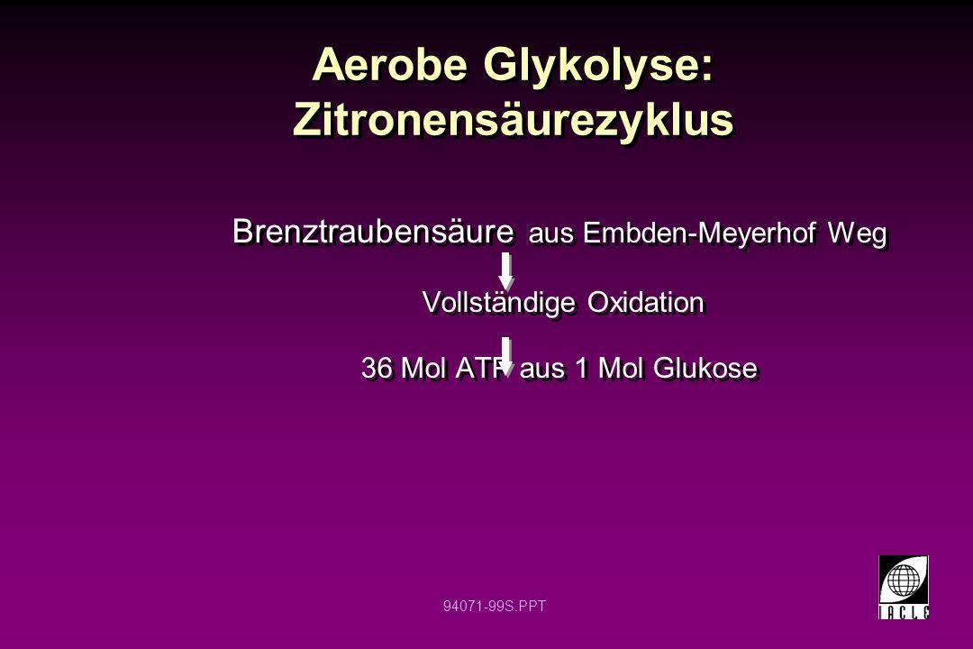 Aerobe Glykolyse: Zitronensäurezyklus