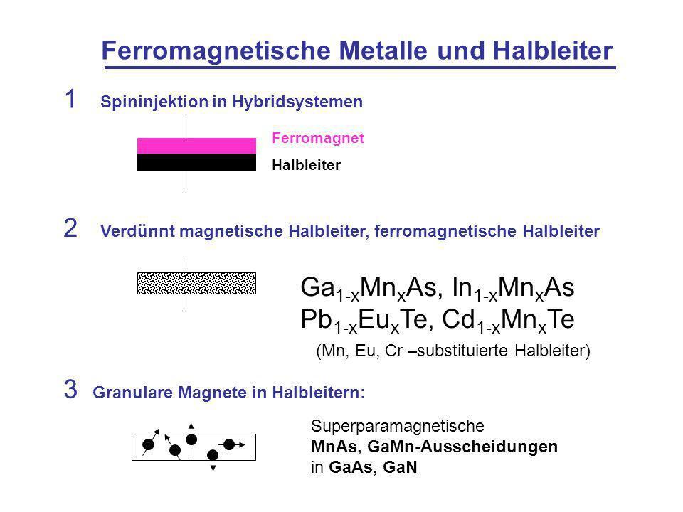 Ferromagnetische Metalle und Halbleiter