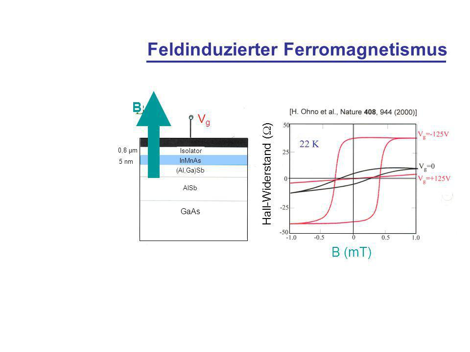 Feldinduzierter Ferromagnetismus
