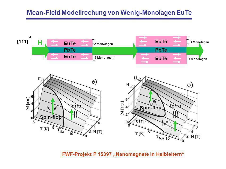 Mean-Field Modellrechung von Wenig-Monolagen EuTe