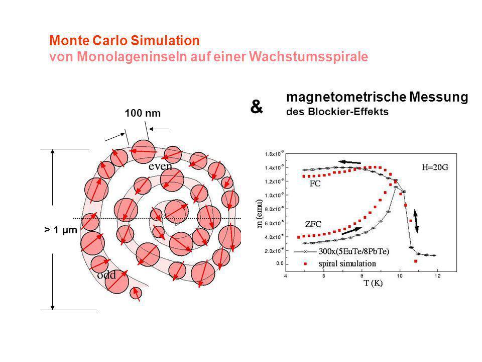 & Monte Carlo Simulation