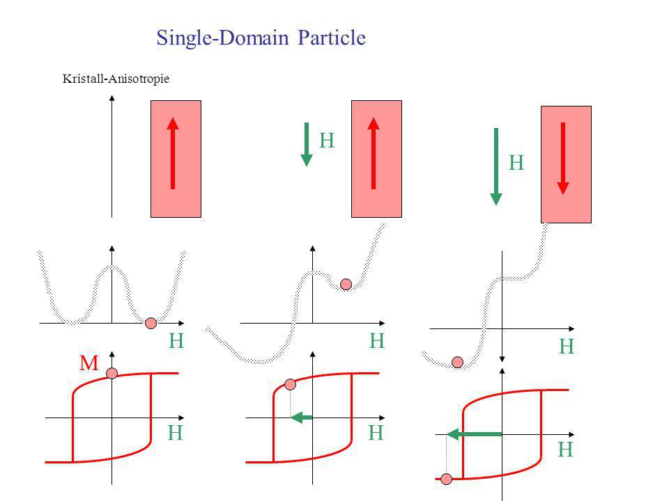 Single-Domain Particle