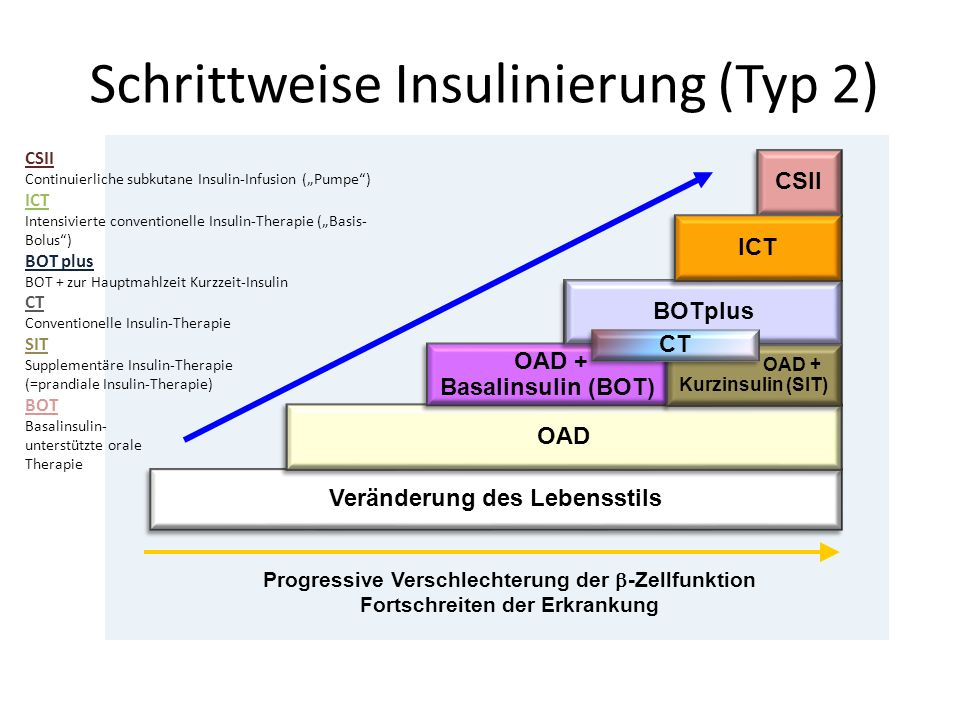 Schrittweise Insulinierung (Typ 2)