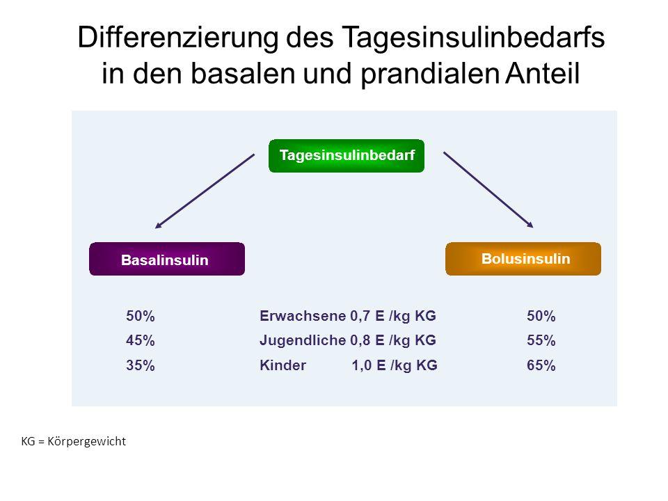 Differenzierung des Tagesinsulinbedarfs in den basalen und prandialen Anteil