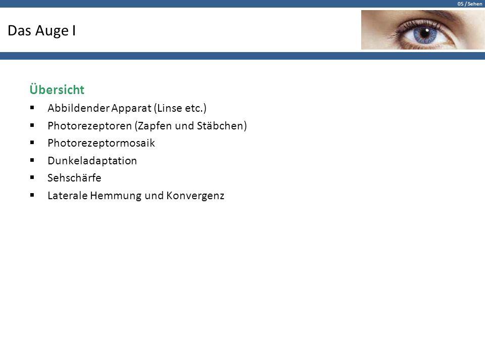 Das Auge I Übersicht Abbildender Apparat (Linse etc.)