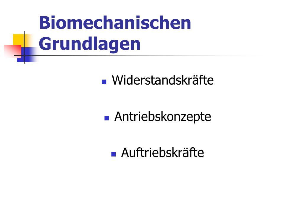 Biomechanischen Grundlagen