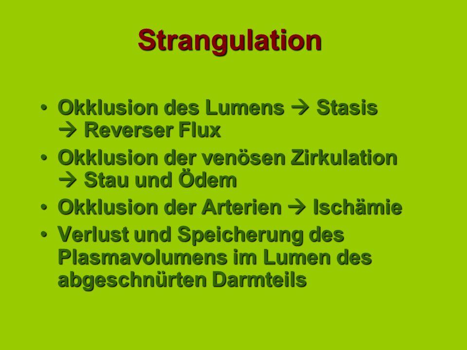 Strangulation Okklusion des Lumens  Stasis  Reverser Flux