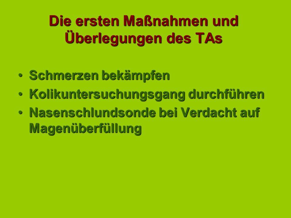 Die ersten Maßnahmen und Überlegungen des TAs