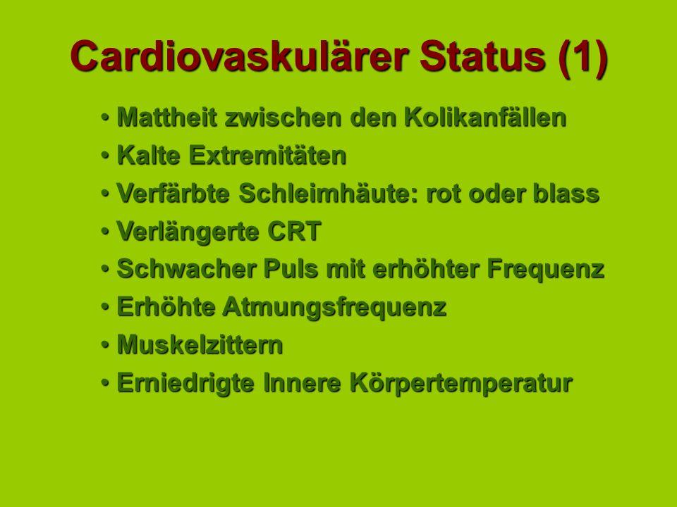 Cardiovaskulärer Status (1)