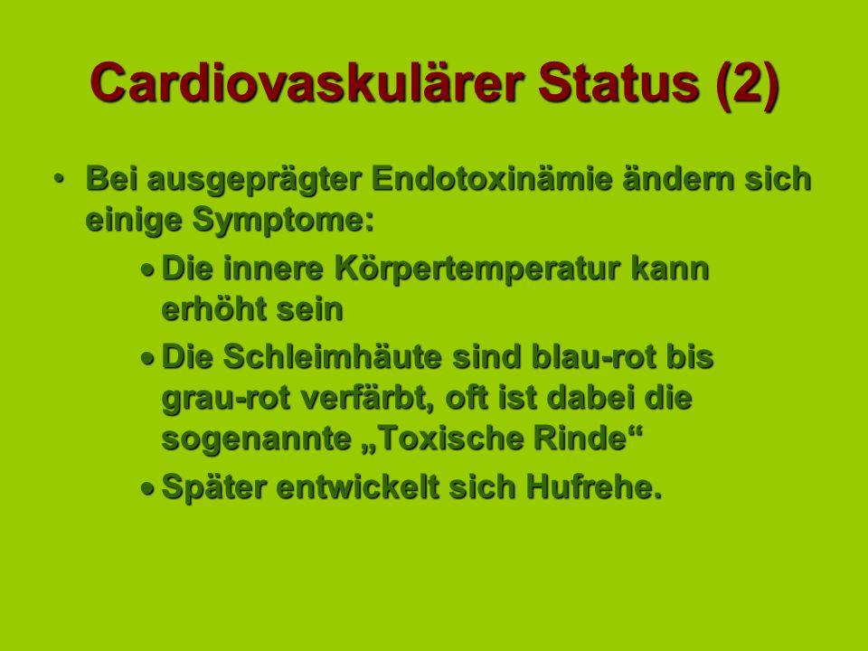 Cardiovaskulärer Status (2)