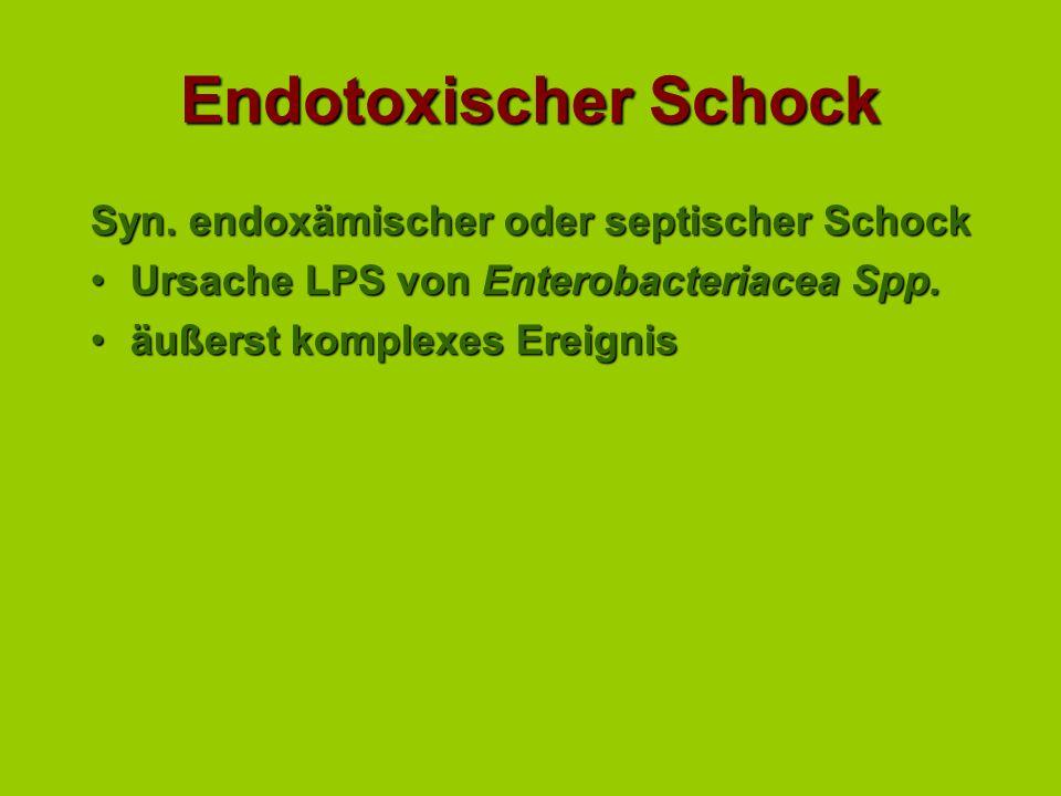 Endotoxischer Schock Syn. endoxämischer oder septischer Schock