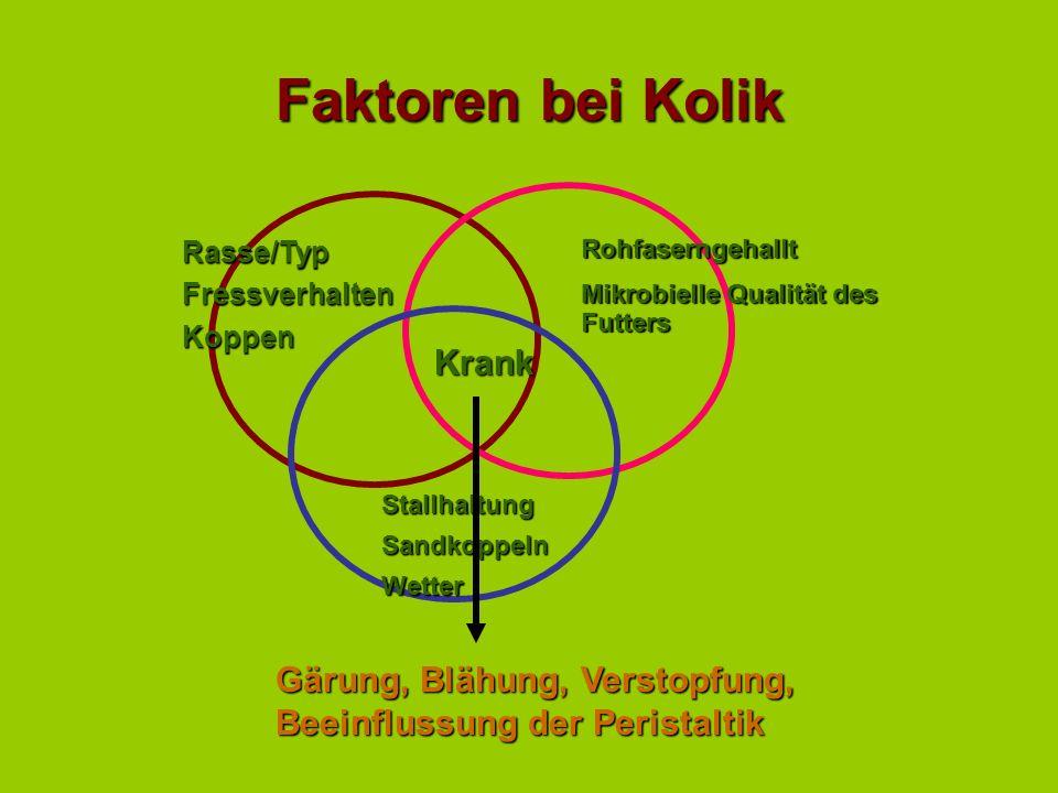 Faktoren bei Kolik Krank