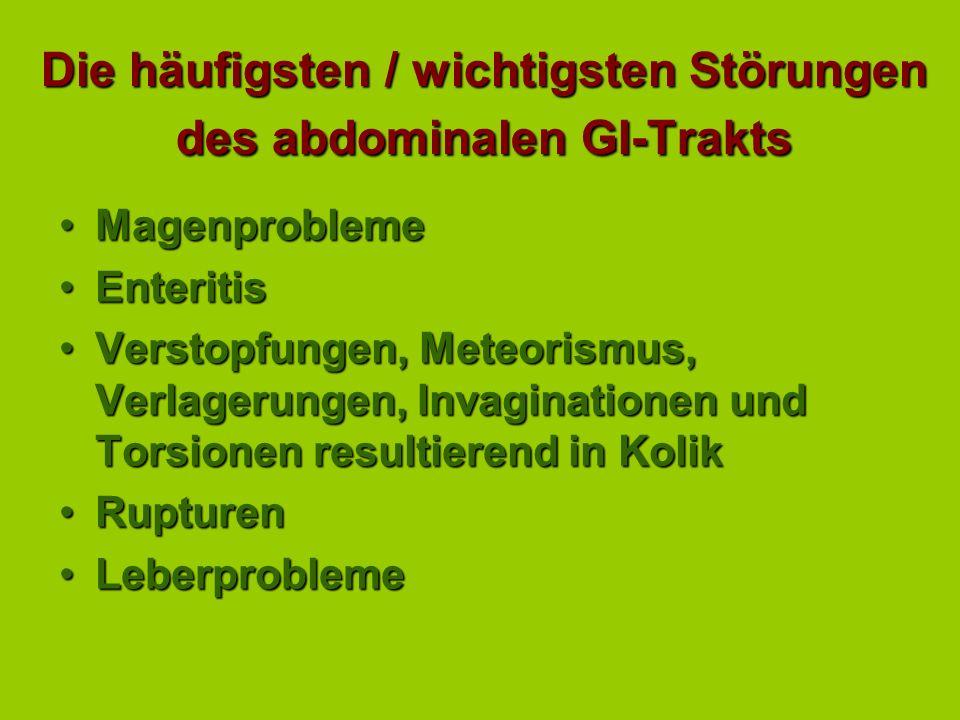 Die häufigsten / wichtigsten Störungen des abdominalen GI-Trakts
