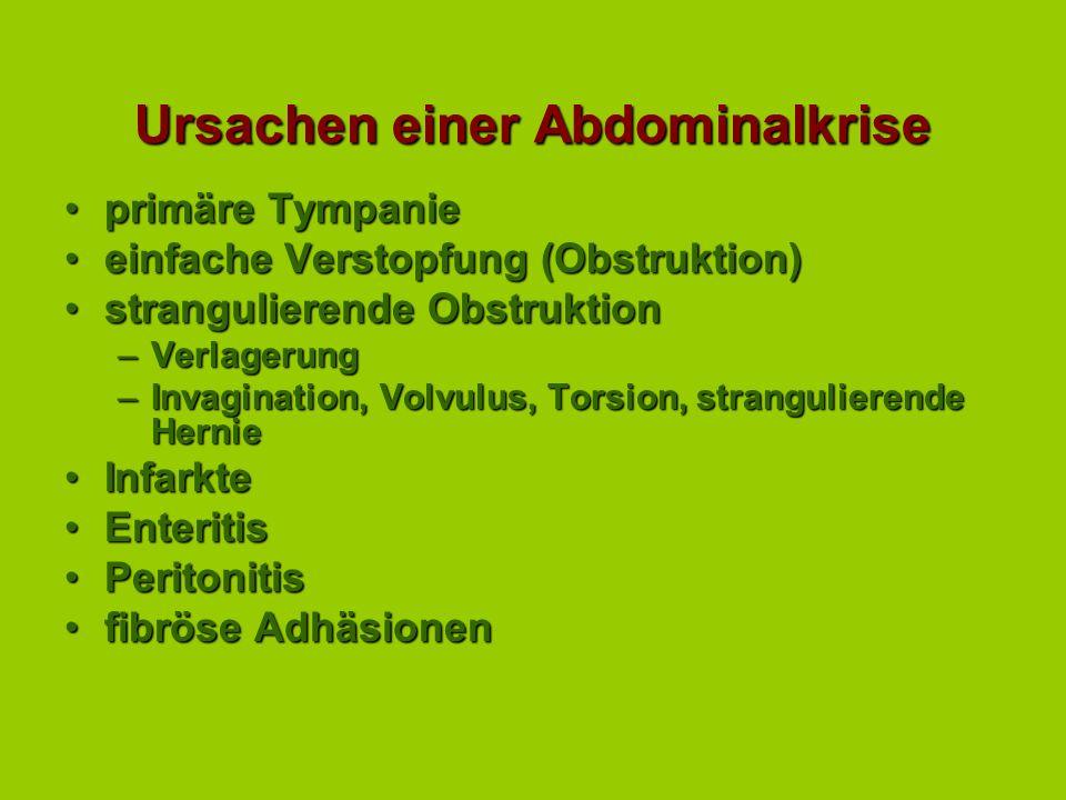 Ursachen einer Abdominalkrise