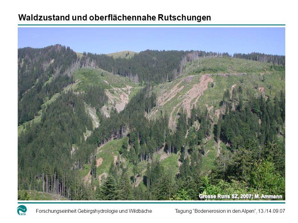 Waldzustand und oberflächennahe Rutschungen